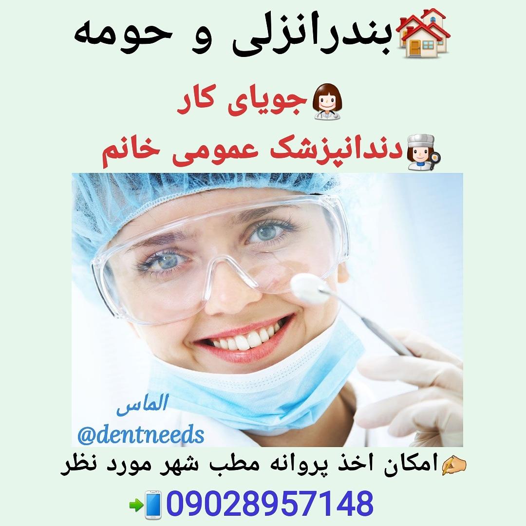 جویای کار، دندانپزشک خانم، بندرانزلی و حومه