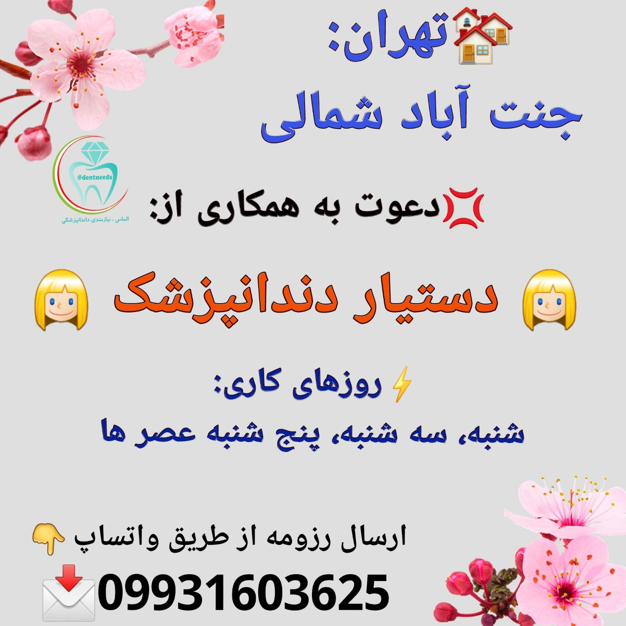 تهران: جنت آباد شمالی، دعوت به همکاری از دستیار دندانپزشک